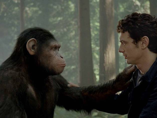Grades Obertes: Rise of the Planet of the Apes