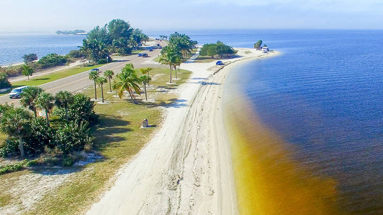 The ultimate guide to Fort Myers
