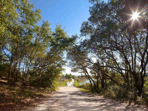 Conservation Park EITW