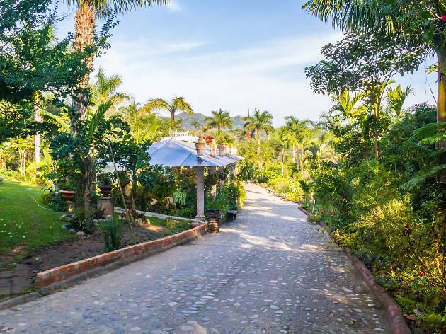 Vallarta Botanical Gardens EITW