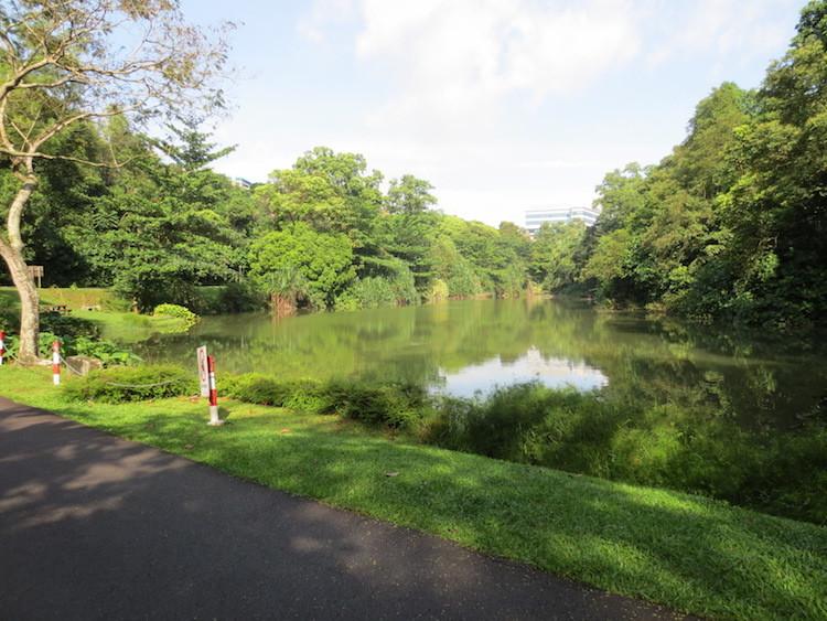 Kent Ridge Park