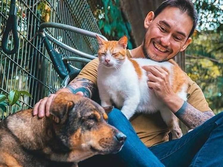 Animal Lovers League