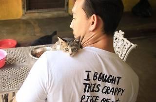 Animal Lovers League - cat