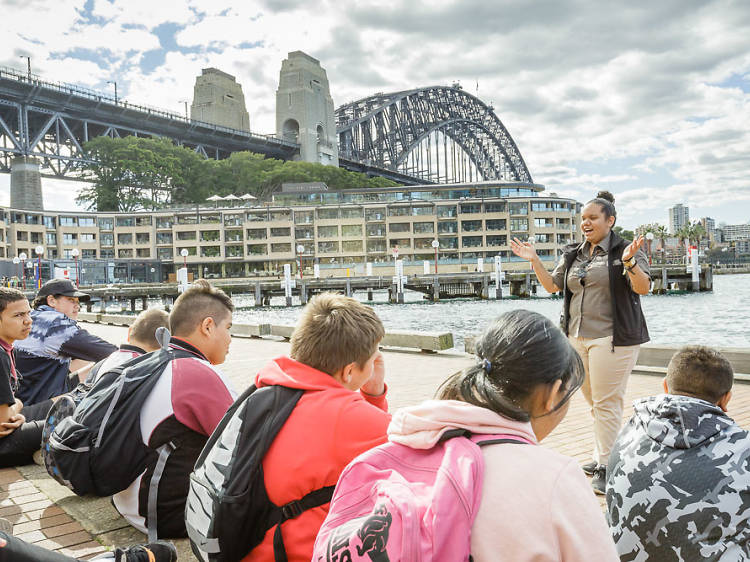 Indigenous walks and tours in Sydney