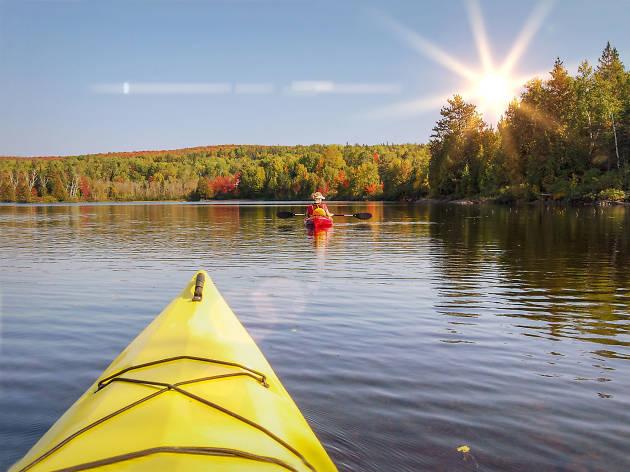 Algonquin Provincial Park - Ontario - Canada
