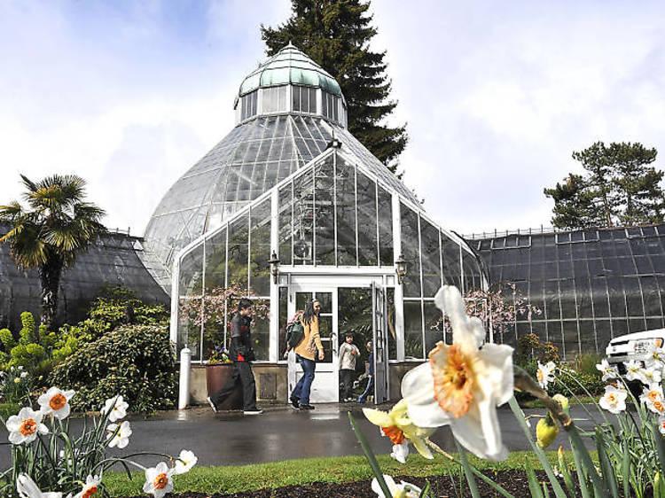 WW Seymour Botanical Conservatory
