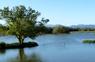 Reserva natural Les Llaunes