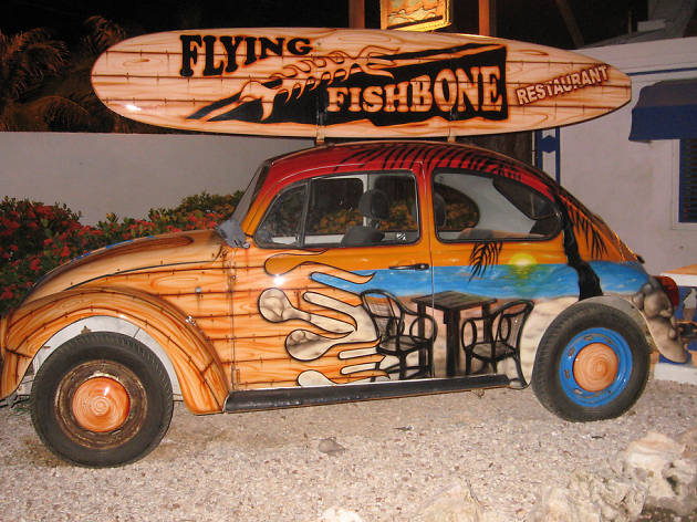 Flying Fishbone