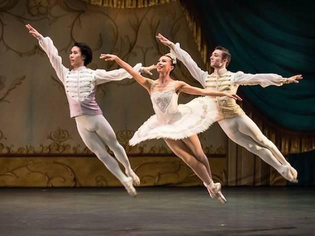 Singapore Dance Theatre – Ballet Under the Stars