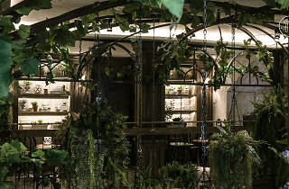 The Bar Upstairs wine bar