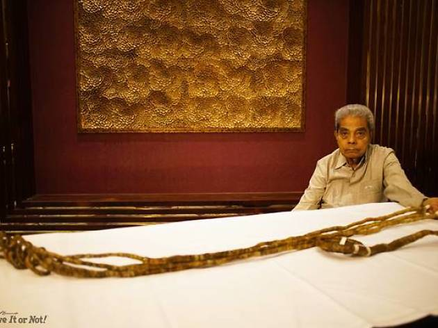 World's Largest Nail Clipping Ceremony For World's Longest Fingernails