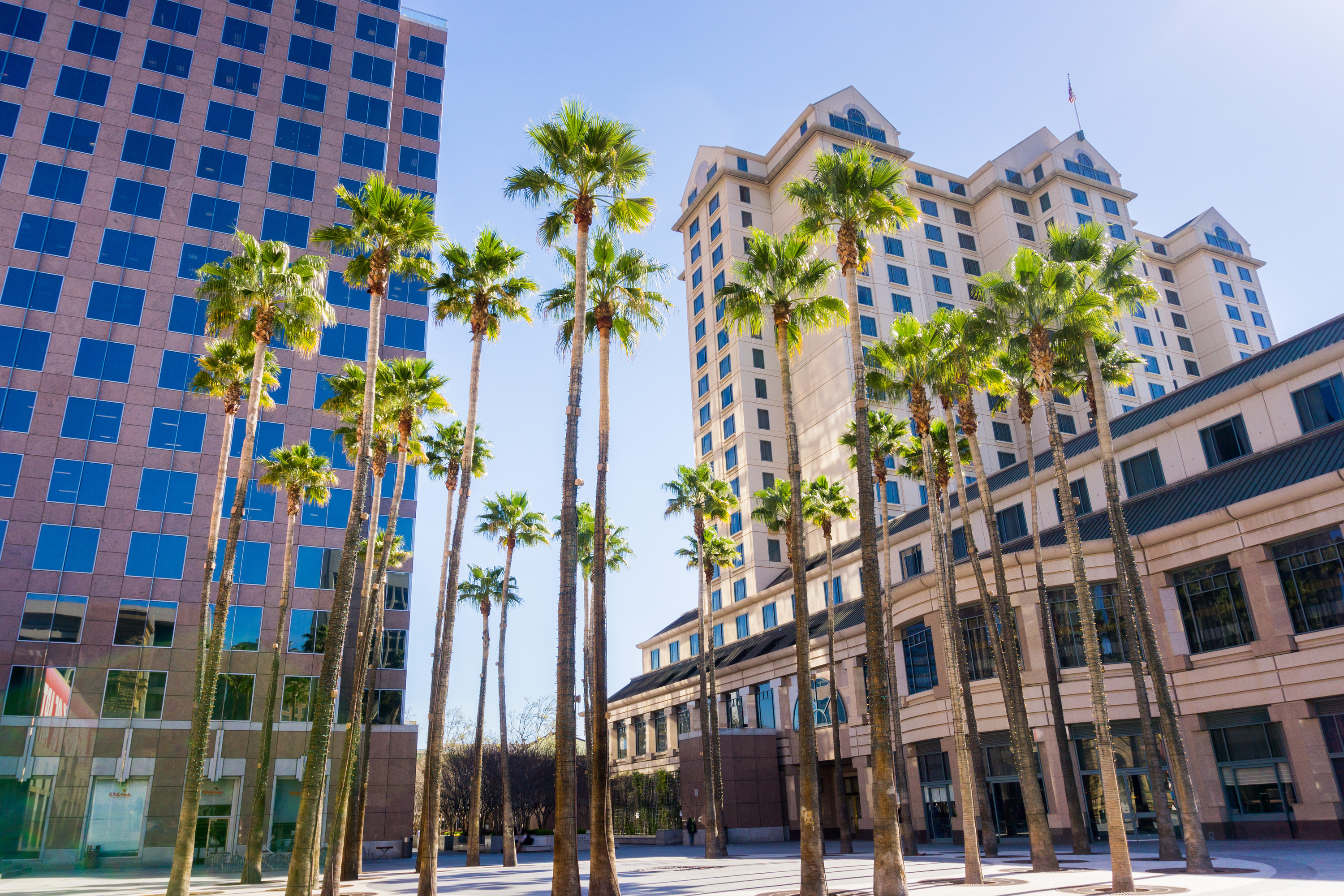 The best things to do in Downtown San Jose