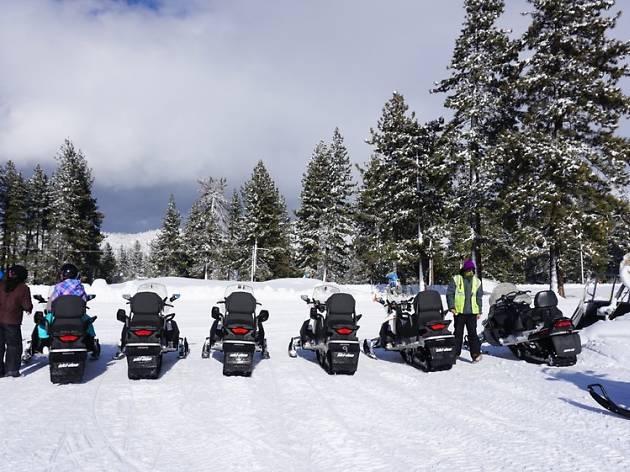 Tahoe Snowmobiles