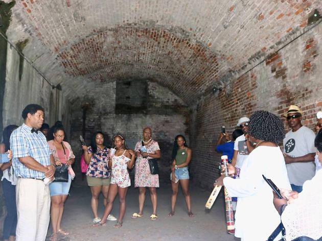 Underground Savannah