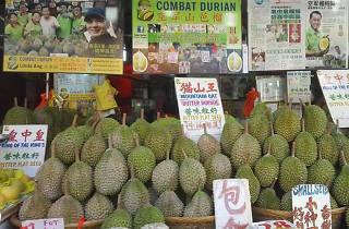Combat Durian