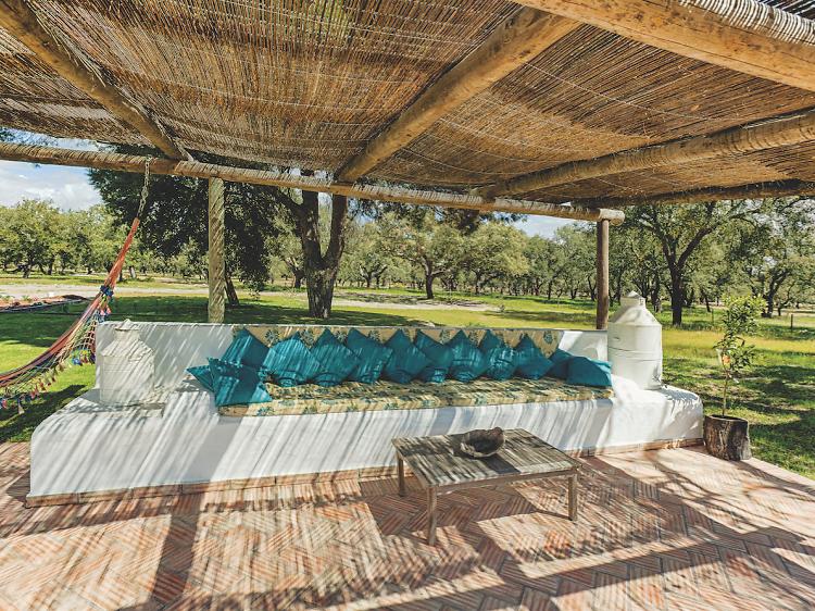 Casa das Cegonhas: um ninho em Alcácer
