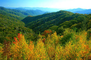 Great Smoky Mountains National Park, EITW