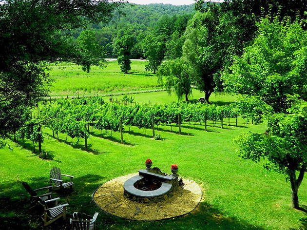 Georgia Wine Country, eitw