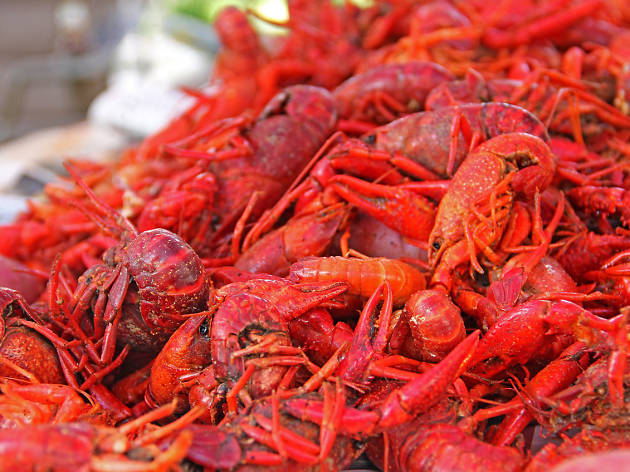 Breaux Bridge Crawfish Festival