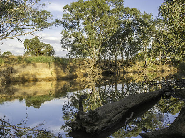 Loddon River  (Photograph: Geoff Park)