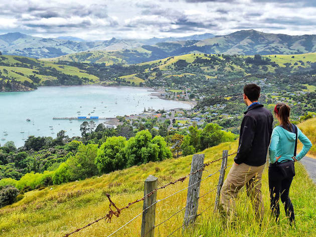 akaroa, things to do in christchurch, new zealand