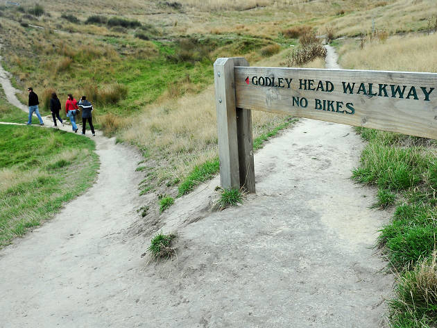 Godley Head Walk, things to do in Christchurch, New Zealand