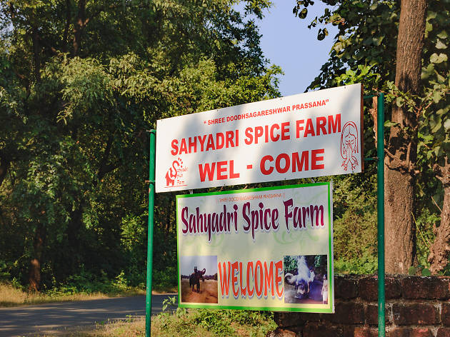 Sahakari Spice Farm, things to do in Goa, India