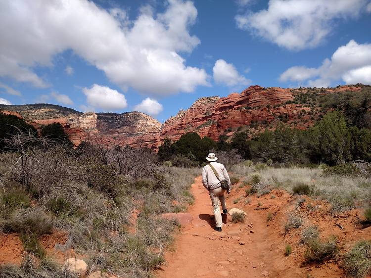 Cow Pies Trail