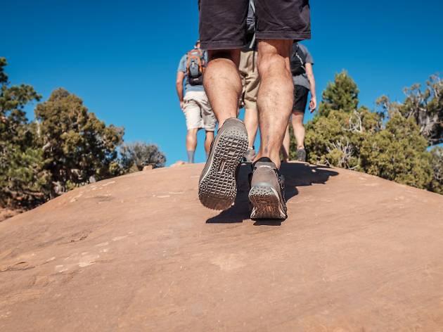 Flagstaff Urban Trail System