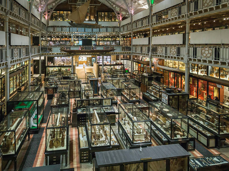 Expand your brain at Pitt Rivers Museum