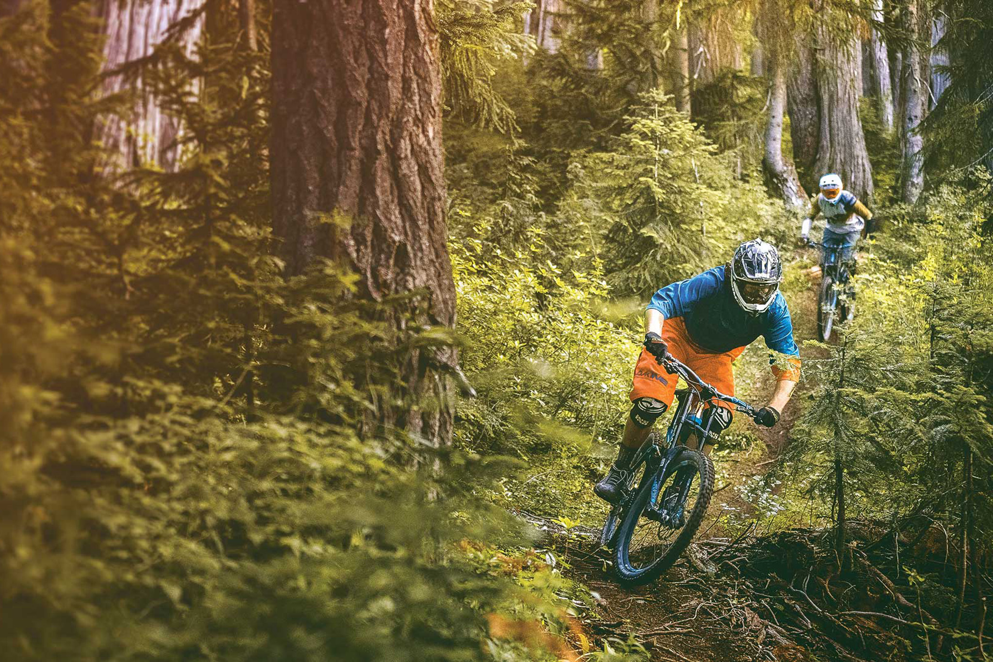 Whistler Mountain Bike Park, eitw