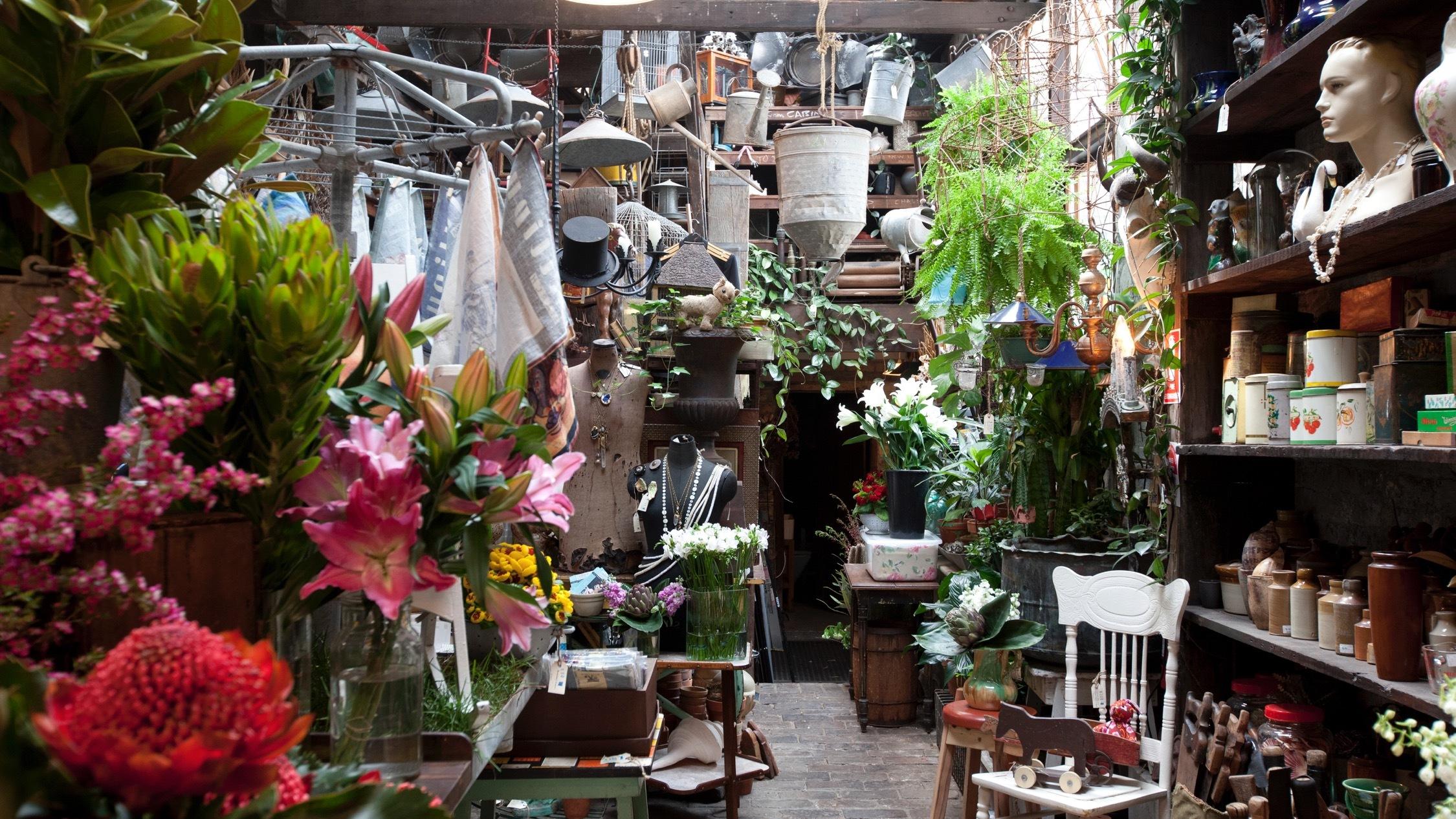 Interior of Seasonal Concepts