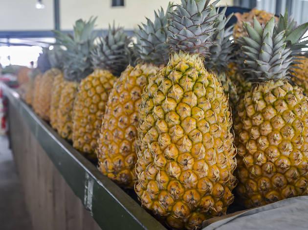 Nadi Produce Market, eitw