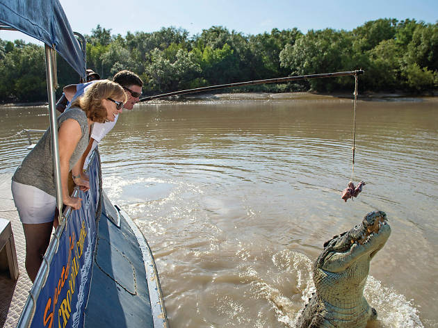 Spectacular Jumping Crocodile Tour, eitw