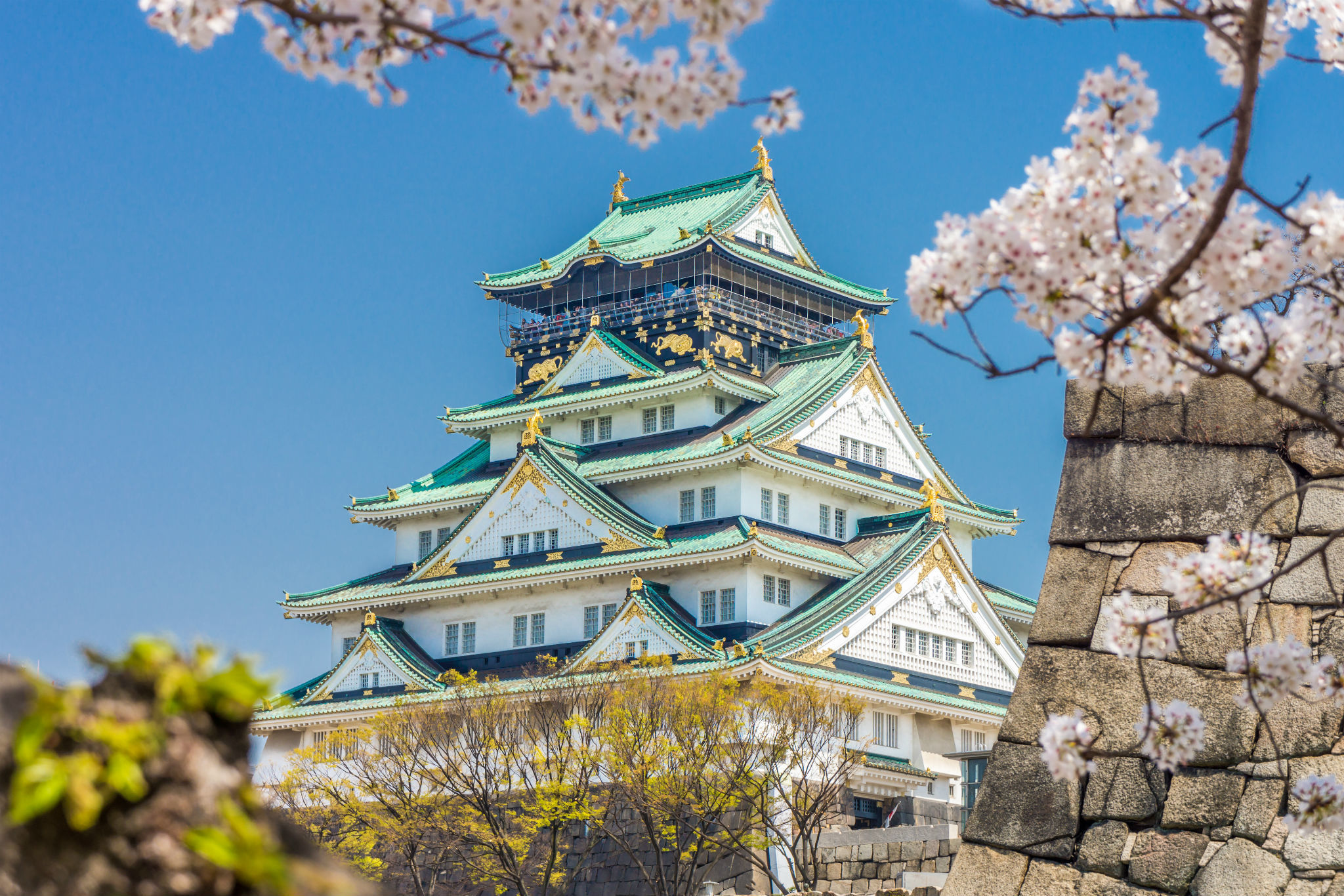 Things To Do in Osaka | 12 Essential Attractions and More