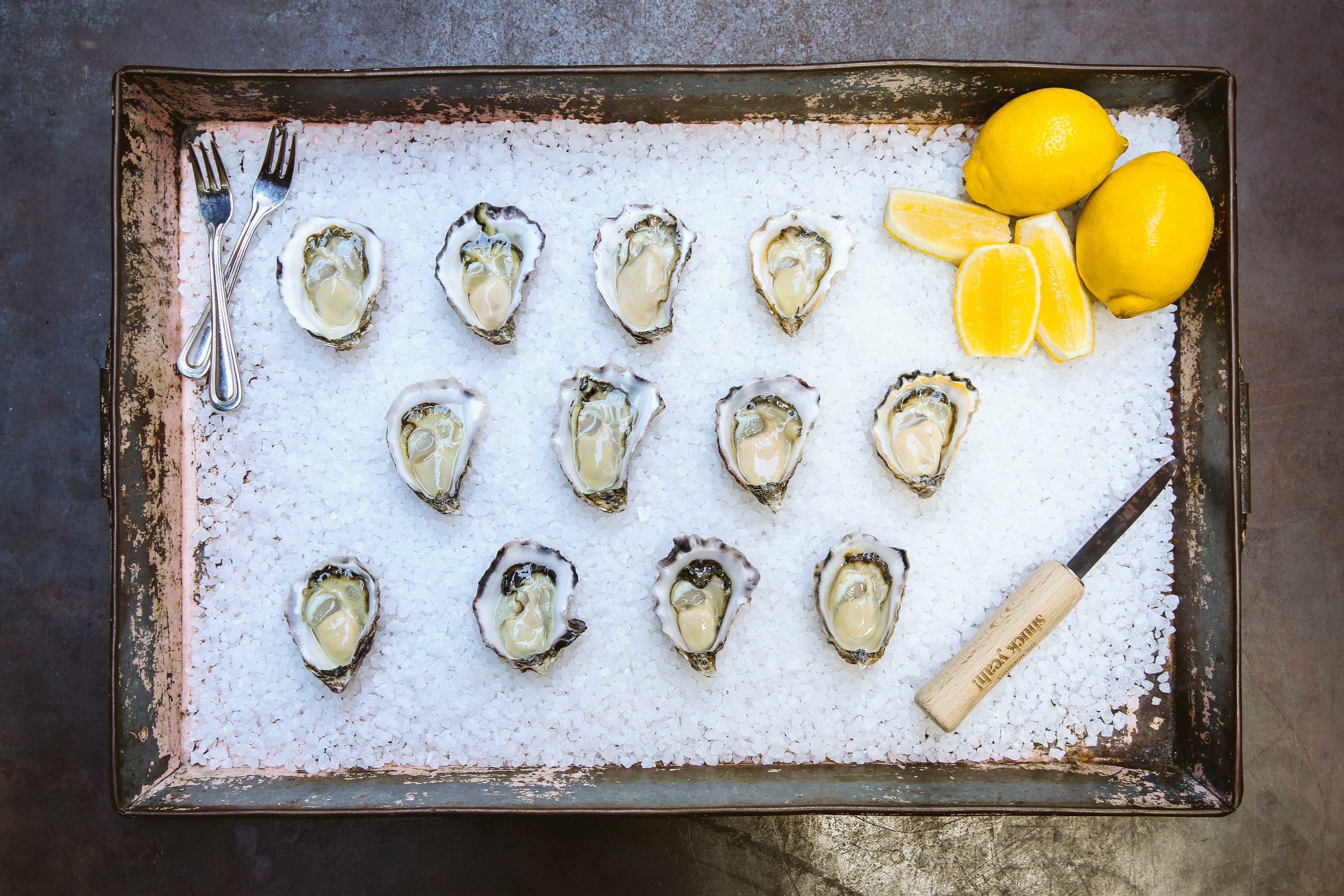 Morrison Oyster Festival tray of oysters in rock salt
