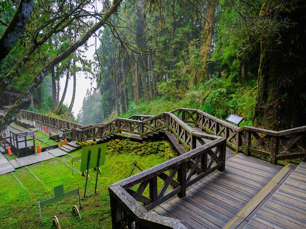 Alishan National Scenic Area