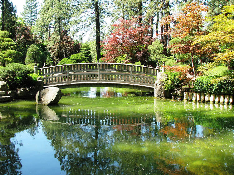 Washington: Walk through Manito Park