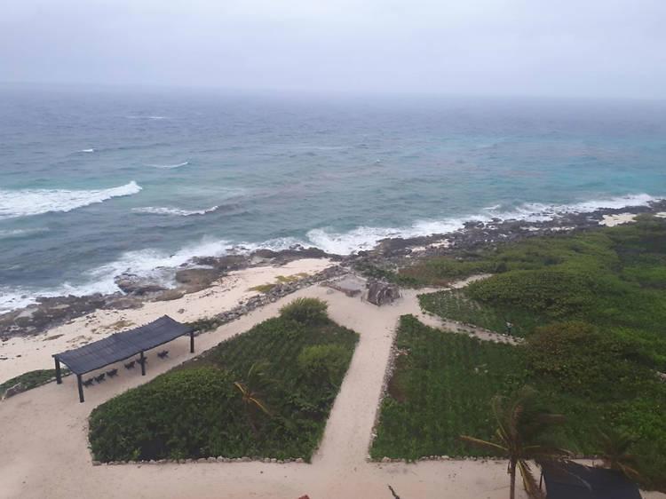 Faro Celerain Eco Park