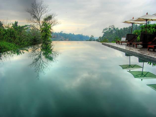 Alila Ubud's infinity pool