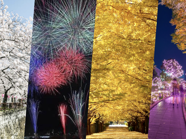 Guide to visiting Tokyo's four seasons