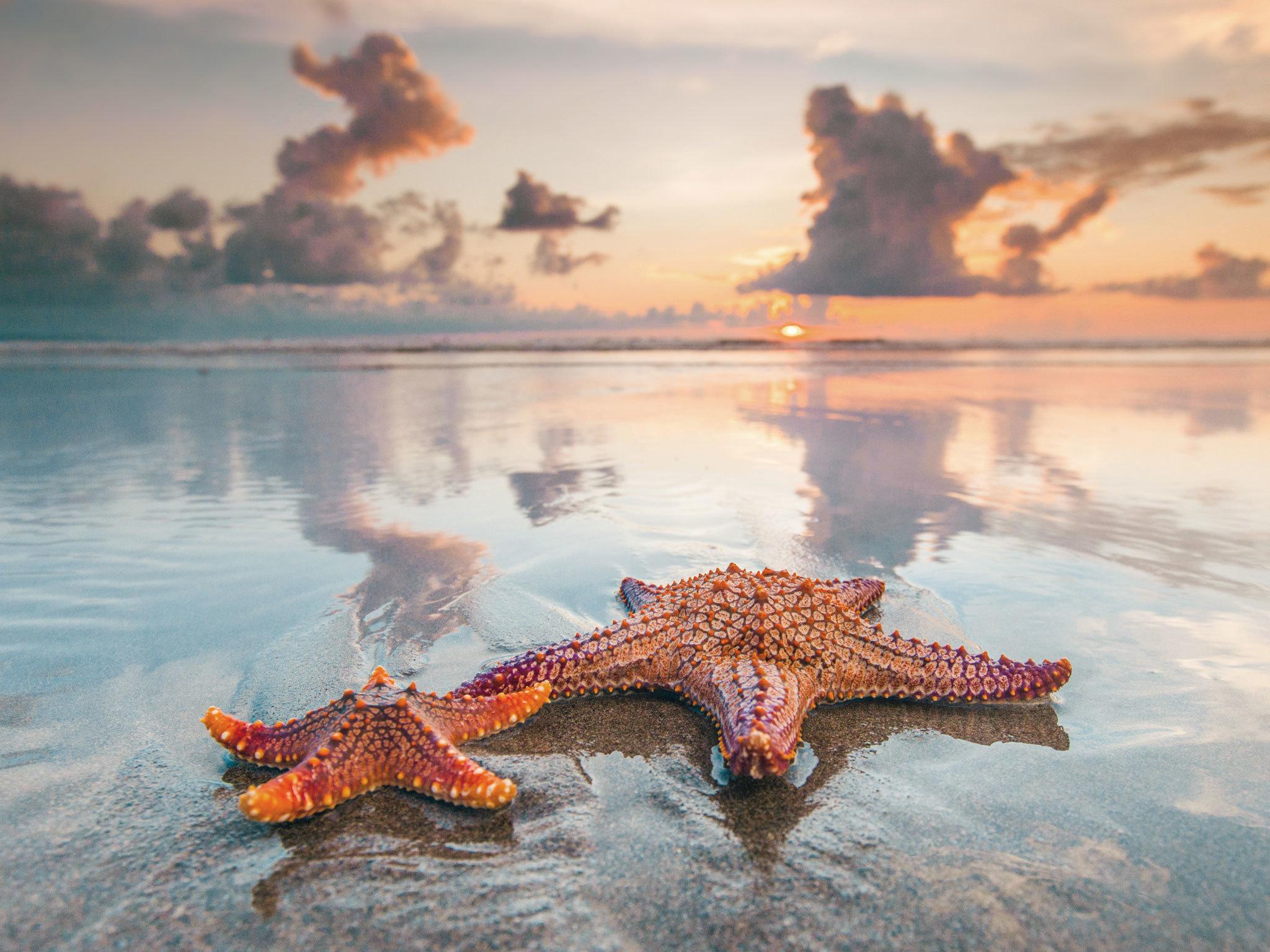 Seminyak Beach - Indonesia