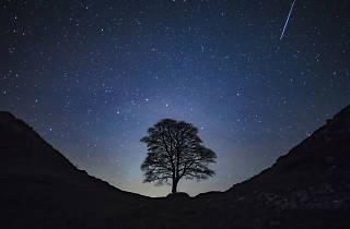 Northumberland International Dark Sky Park