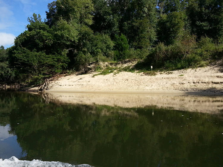 Bear Paw Adventures and the Chipola River