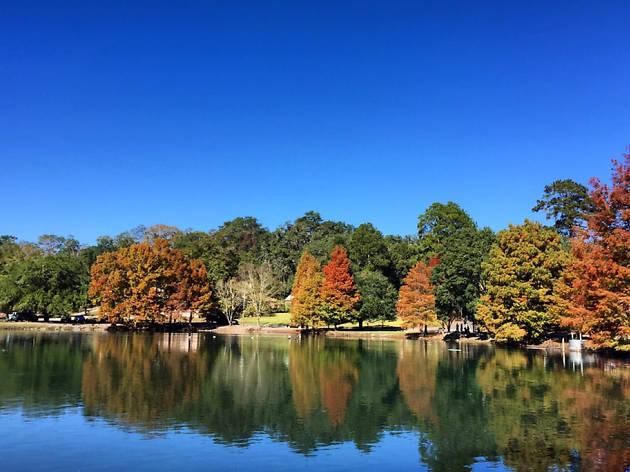 Lake Ella