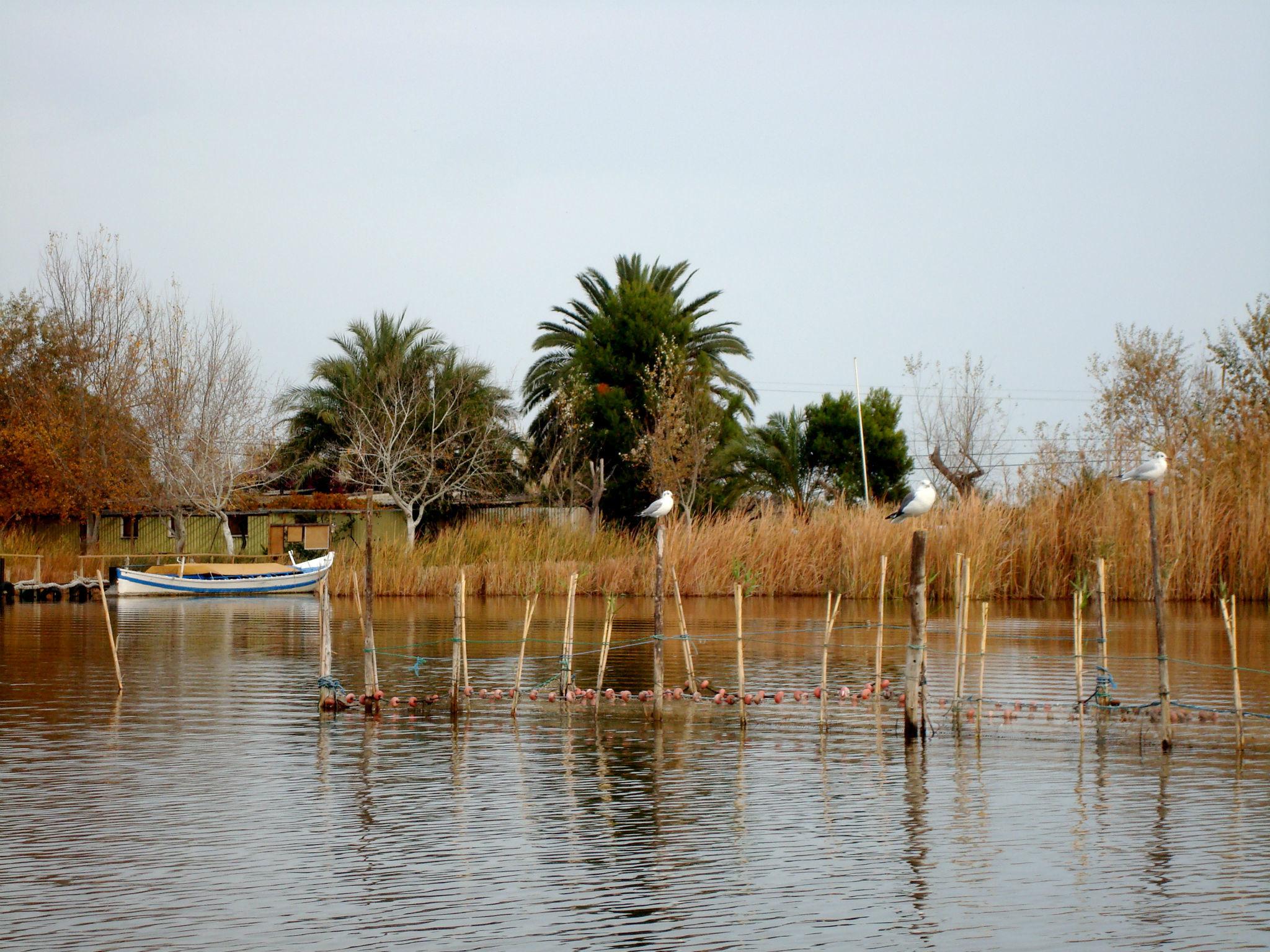 Parc Natural de l'Albufera