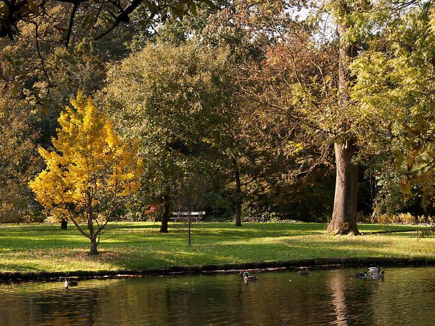 Arboretum Trompenburg / Kralingse Bos - Rotterdam - Netherlands