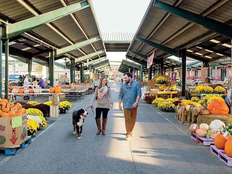 Capitol Market
