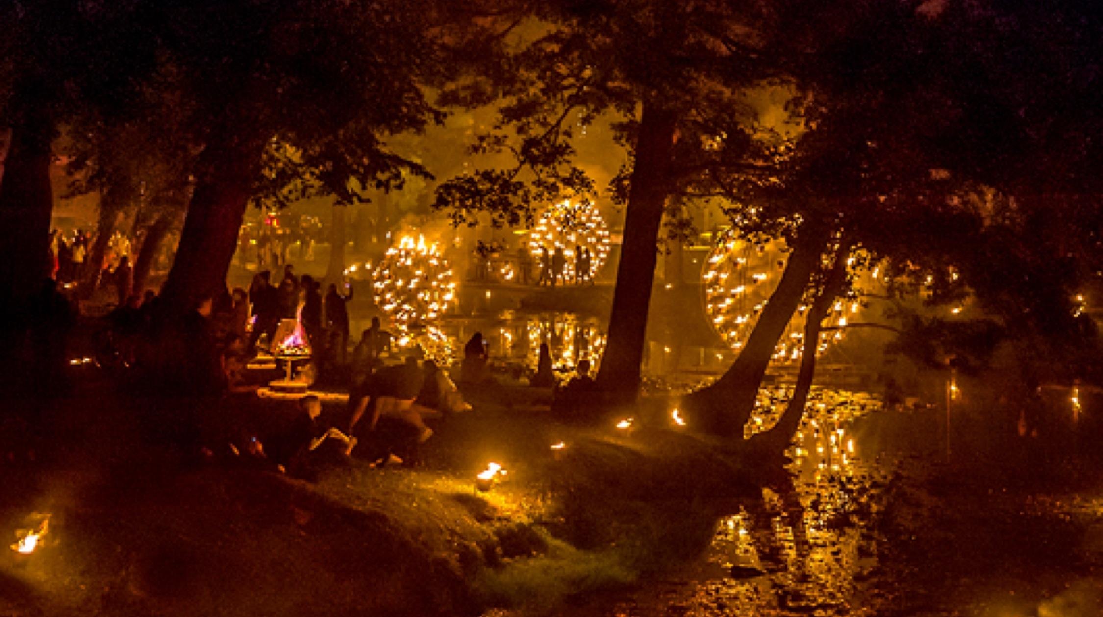 Fire Gardens