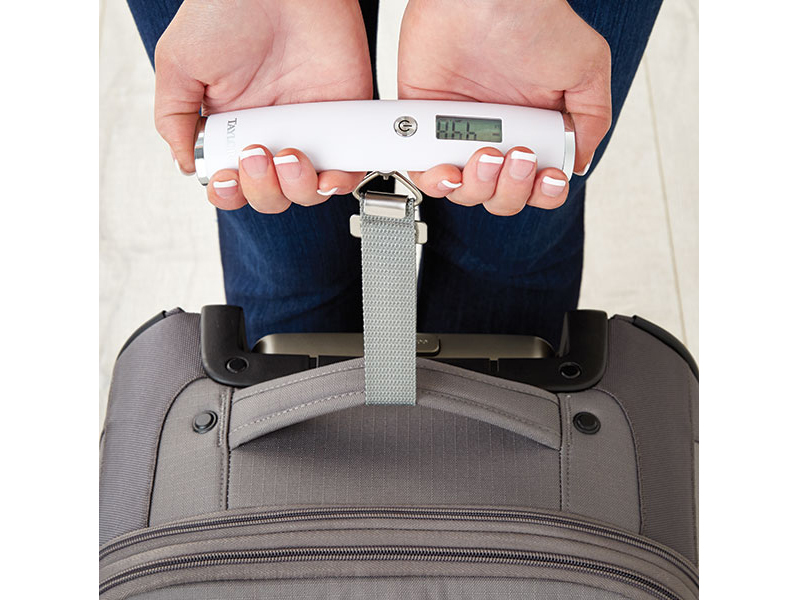 Containerstore luggage scale